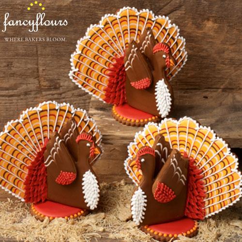 Julia Usher's Turkey in the Straw Project Kit