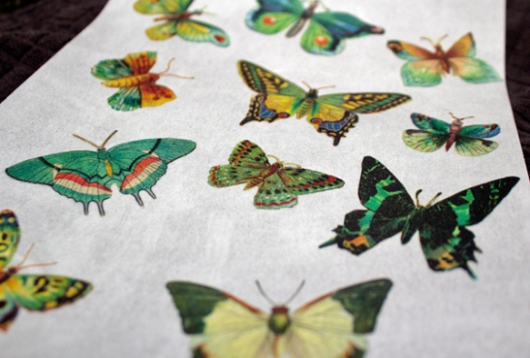 Butterfly-Wafer-Paper
