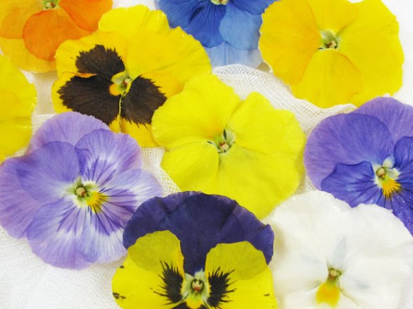 edible-pansies1