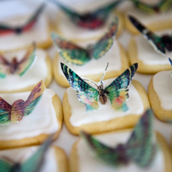 butterfly-wafer-paper.jpg
